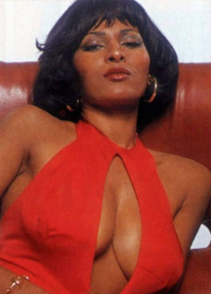 pam grier sexy