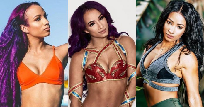 61 Hottest Sasha Banks Boobs Pictures That Are Ravishingly Revealing