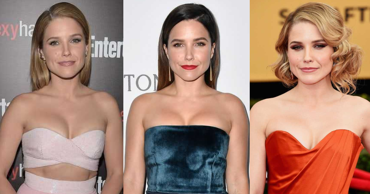 61 Hottest Sophia Bush Boobs Pictures That Are Ravishingly Revealing
