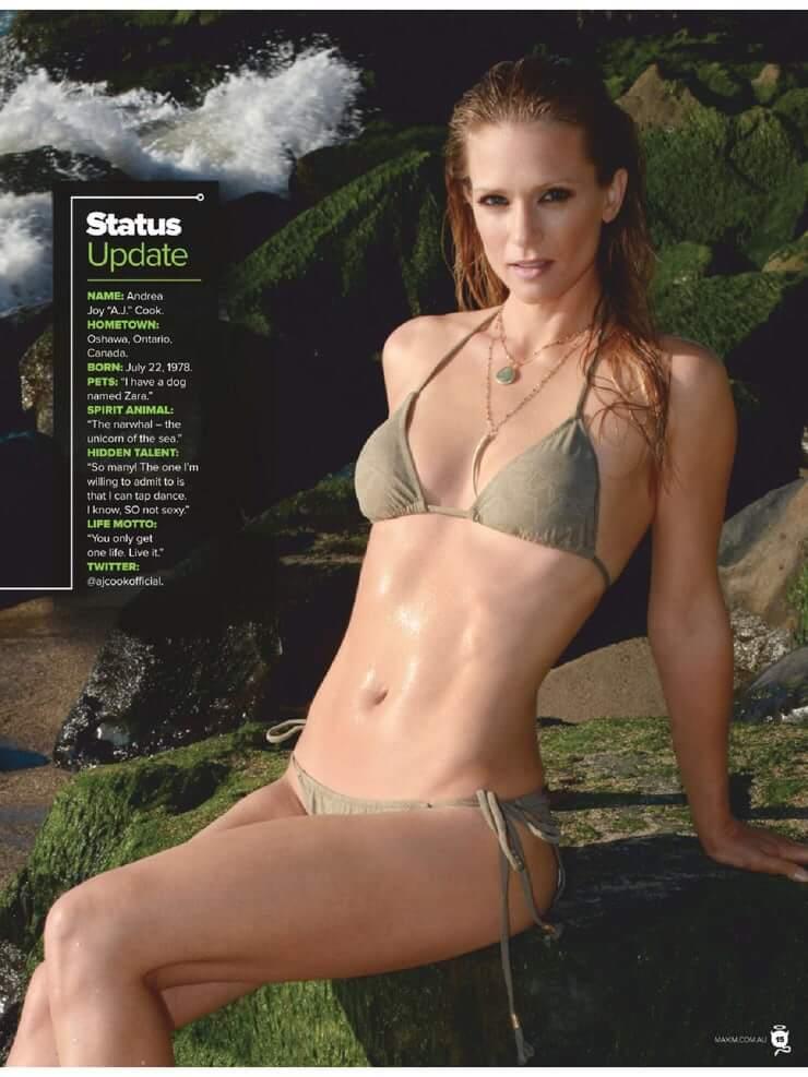 A. J. Cook bikini pics