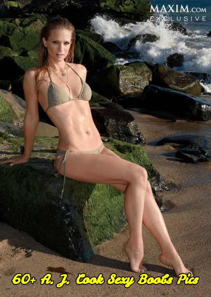 A. J. Cook sexy boobs pics