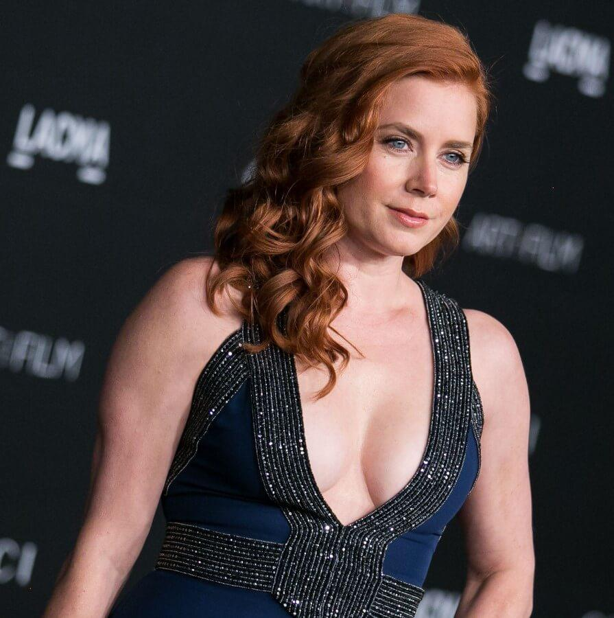 Amy Adams sexy cleavage