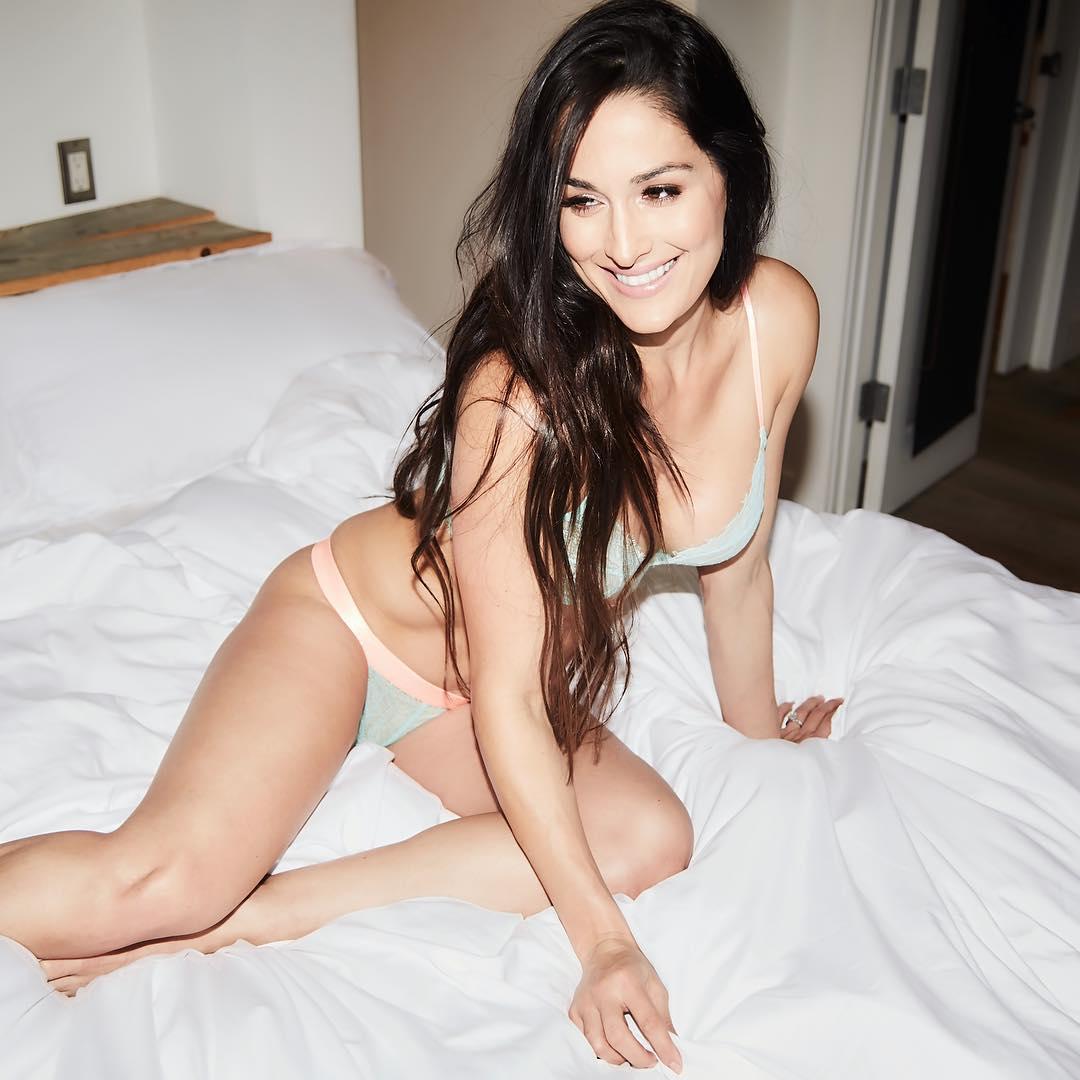 Nikki Bella hot bikini pic