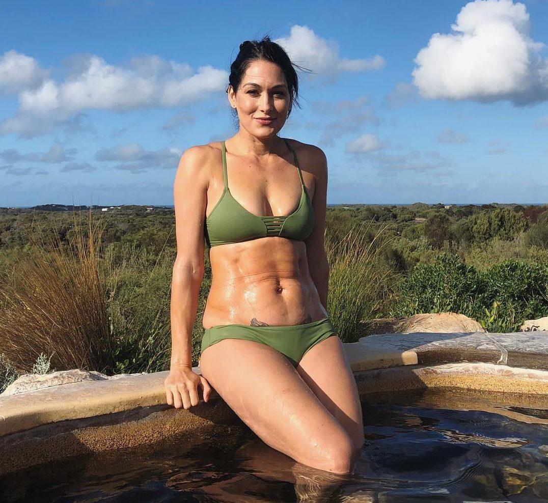 Nikki Bella hot