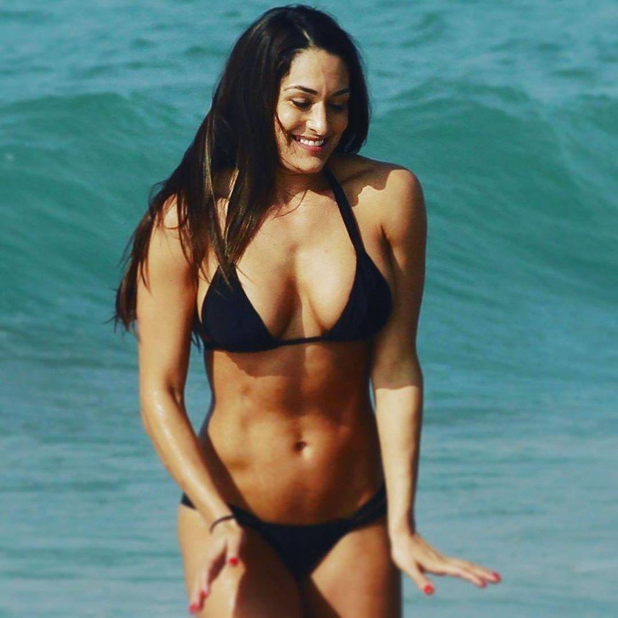 Nikki Bella sexy bikini pic