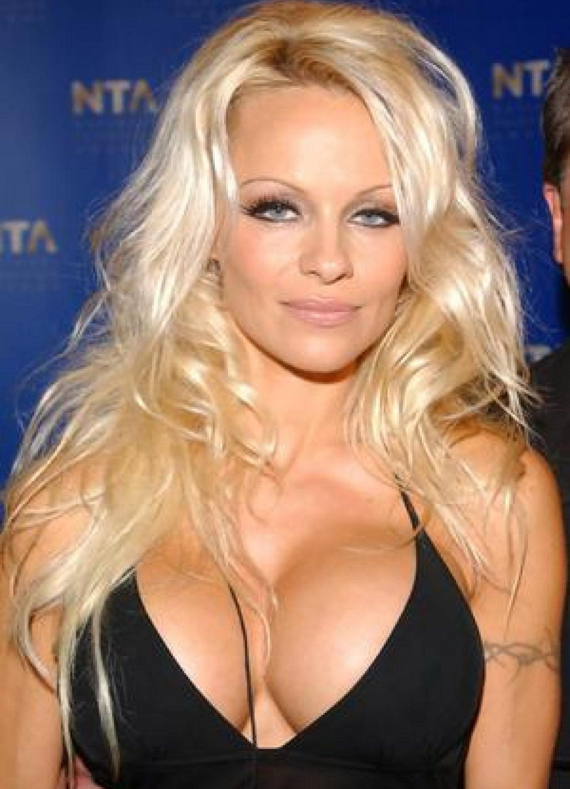 Pamela Anderson big boobs pics