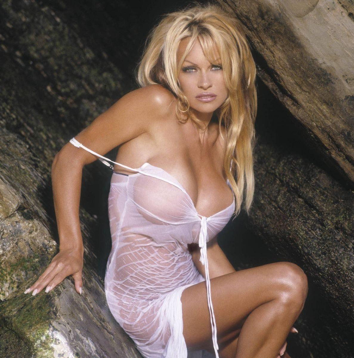 Pamela Anderson big tits pics