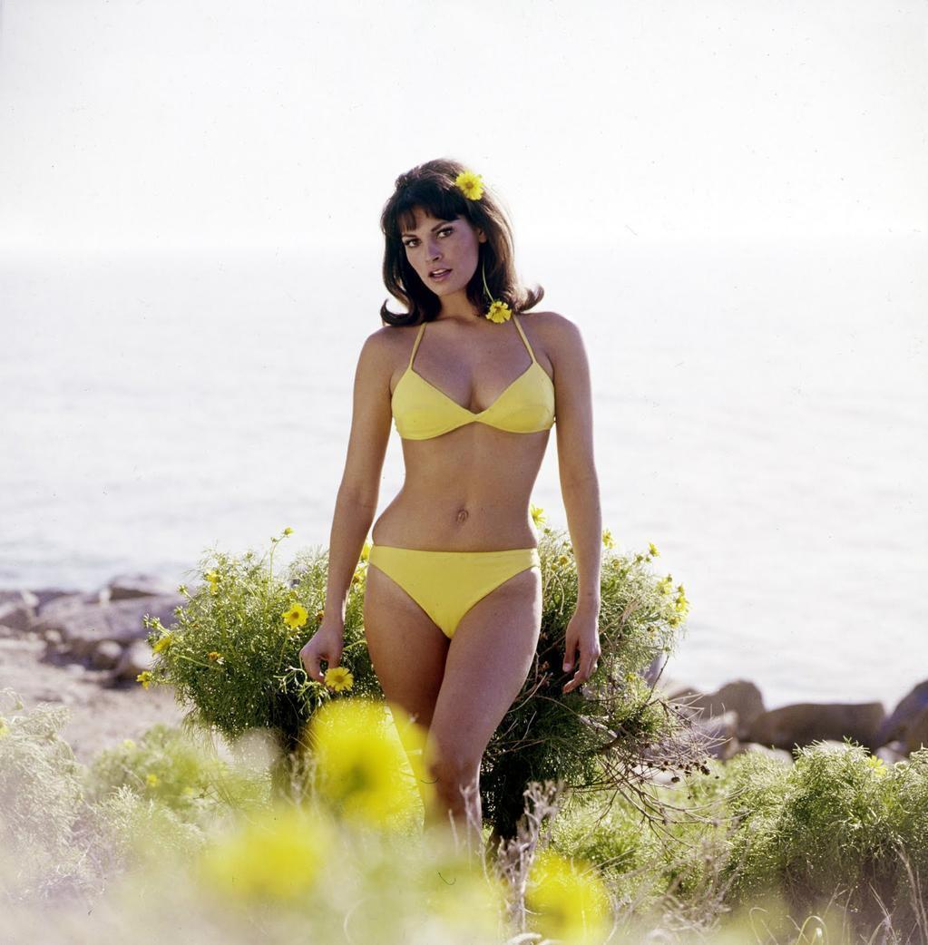 Raquel Welch bikini pics