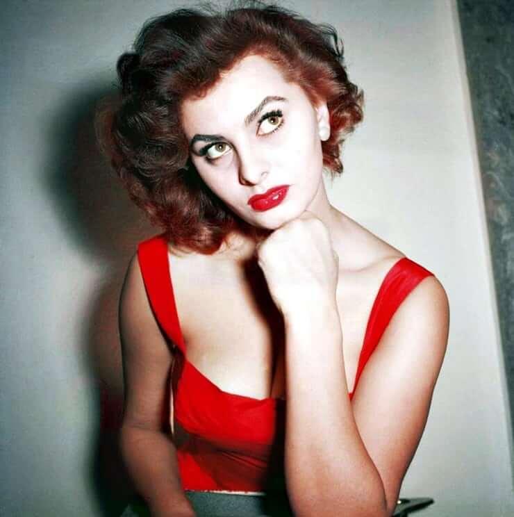 Sophia Loren sexy pics