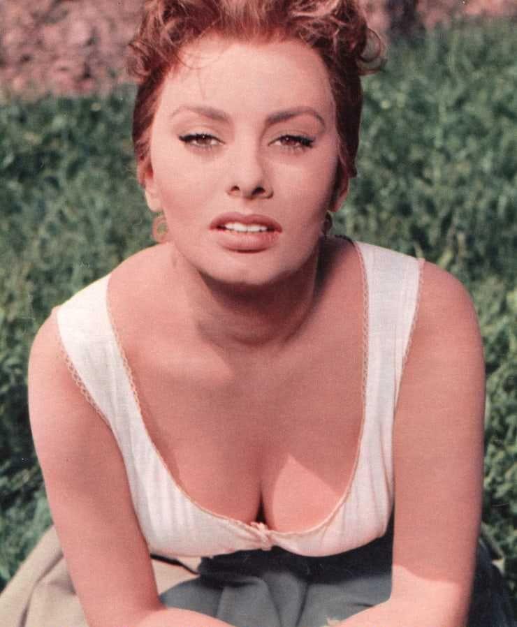 Sophia Loren sexy tits pics