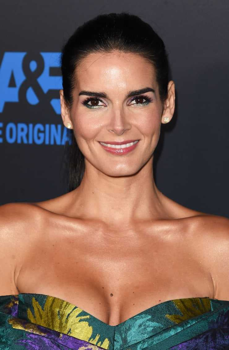 angie harmon cleavage pic