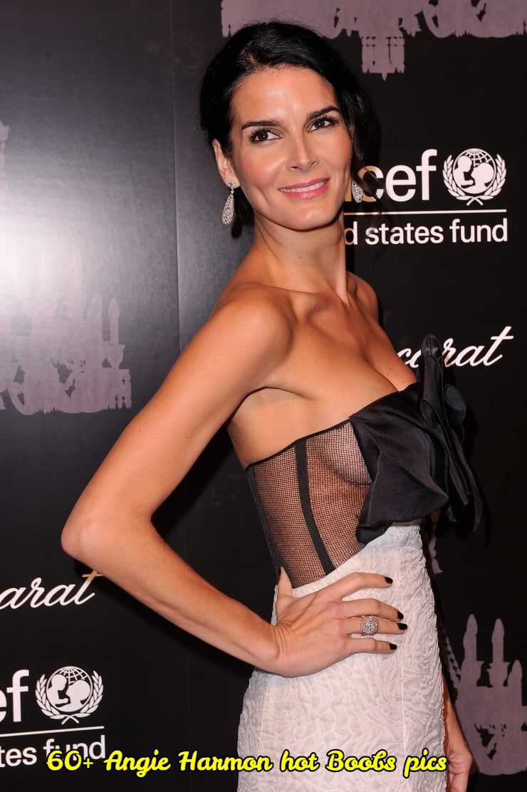 angie harmon sexy picture