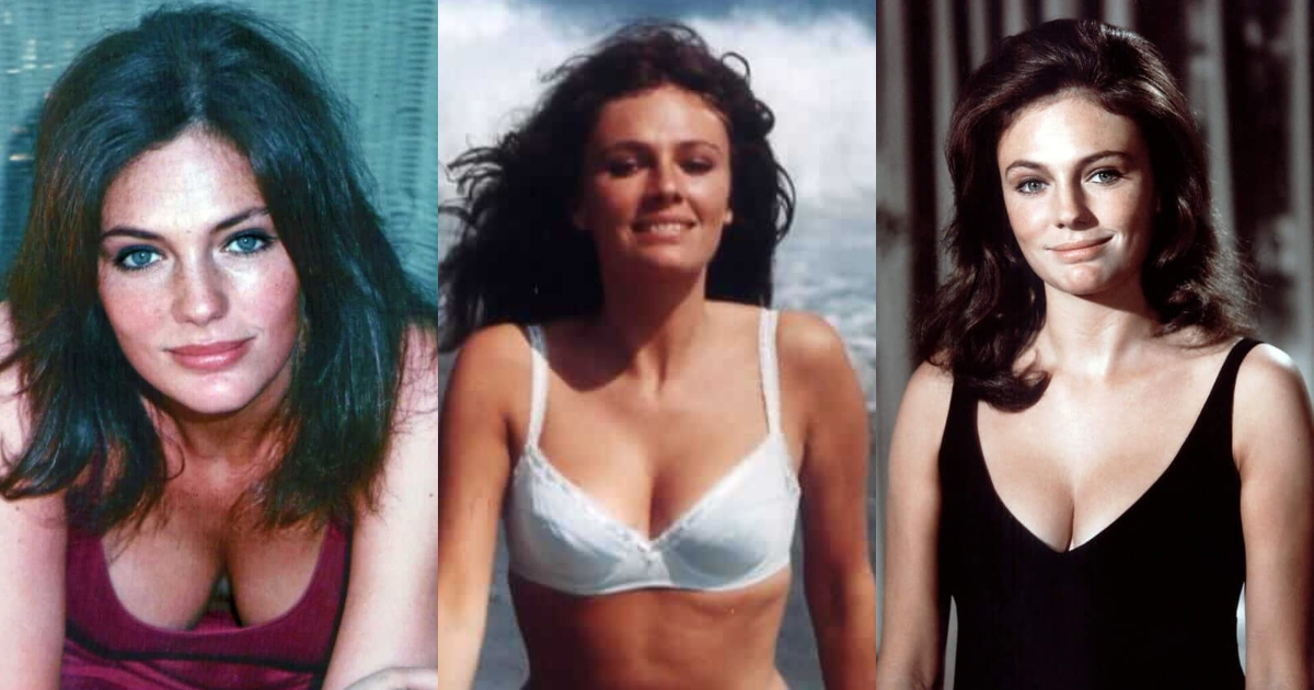 61 Hottest Jacqueline Bisset Boobs Pictures Will Tempt You To Hug Her Tightly