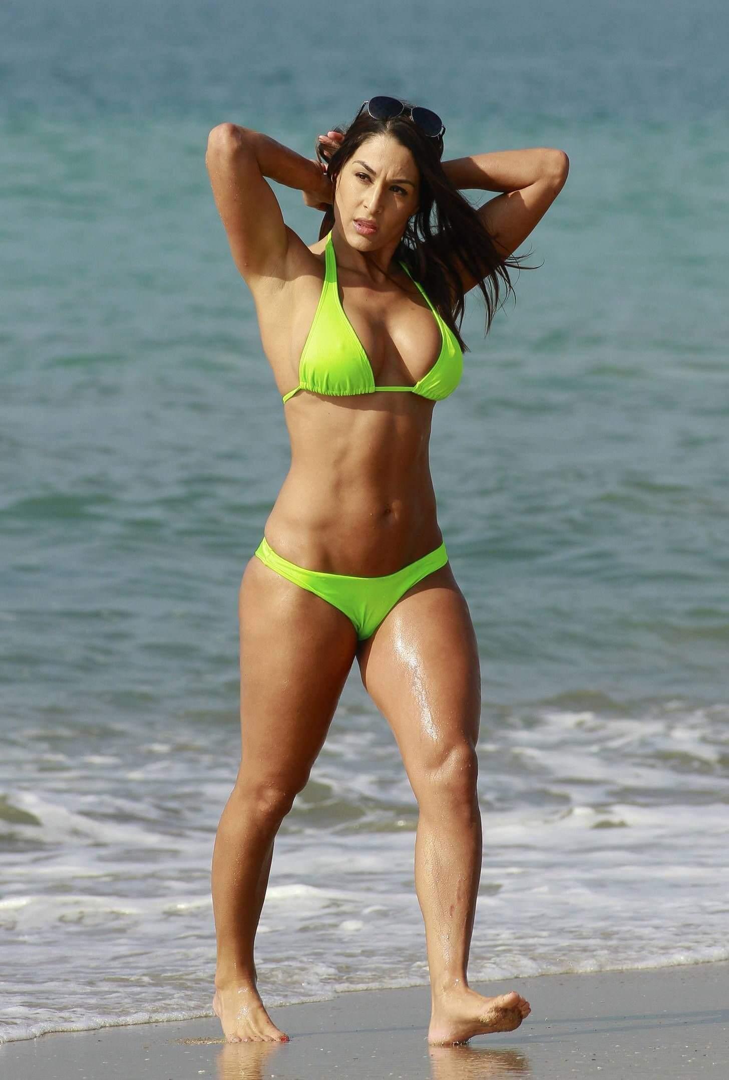 Brie Bella amazing tits pics