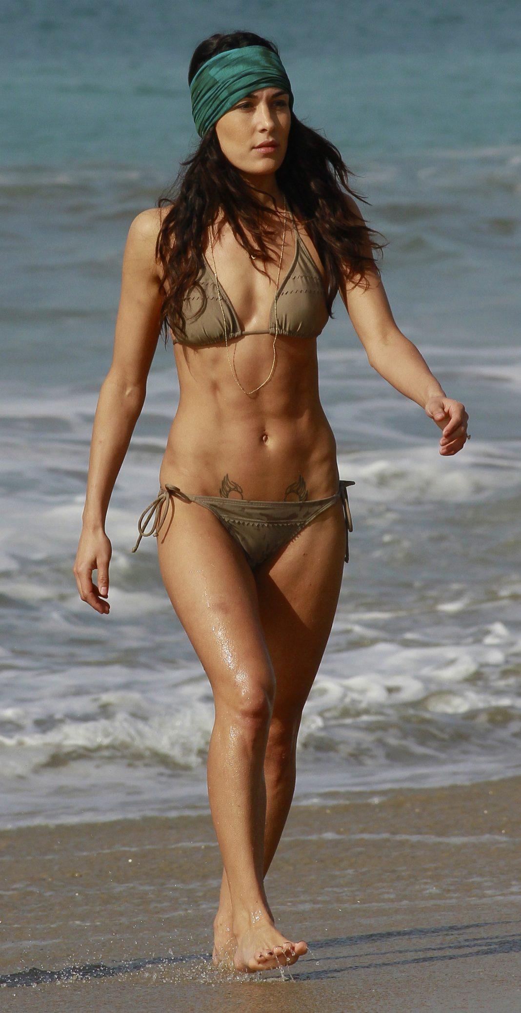 Brie Bella beautiful bikini pics