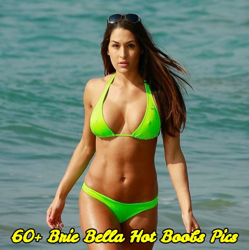 Brie Bella hot boobs pics