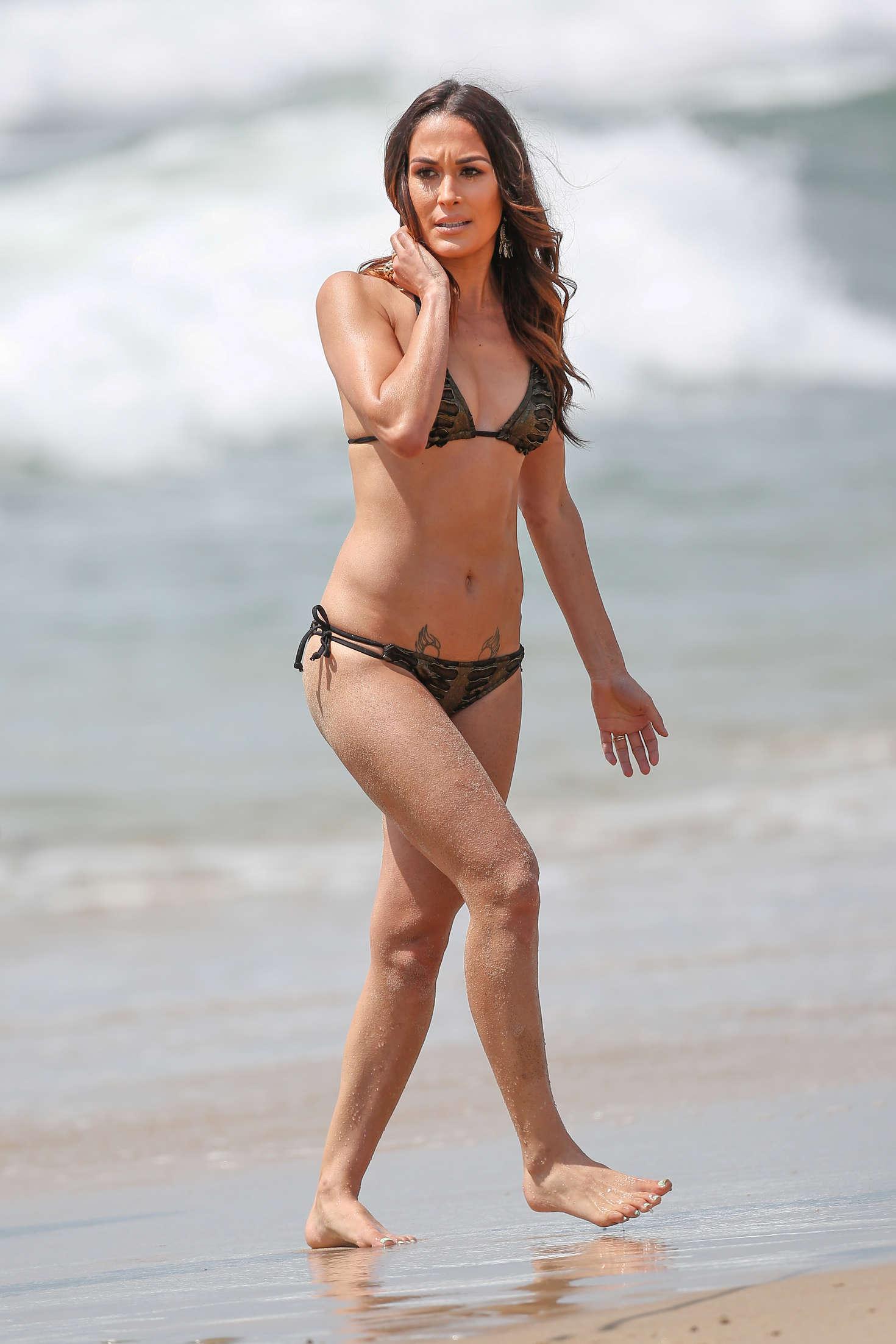 Brie Bella sexy ass pics