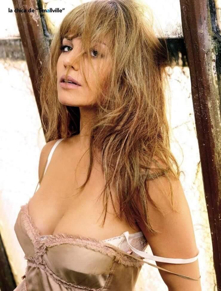 Erica Durance tits pics (2)