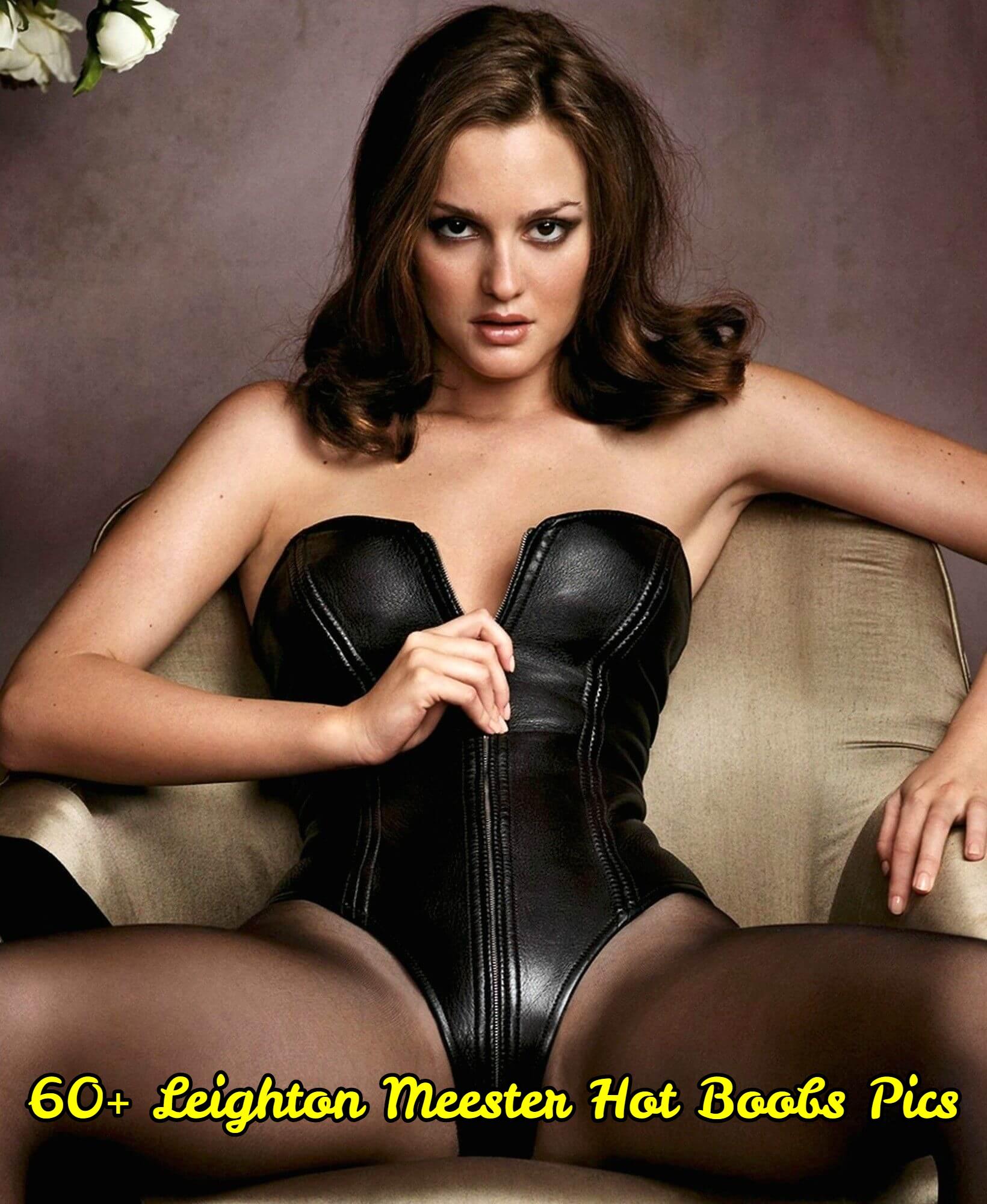 Leighton Meester hot boobs pics