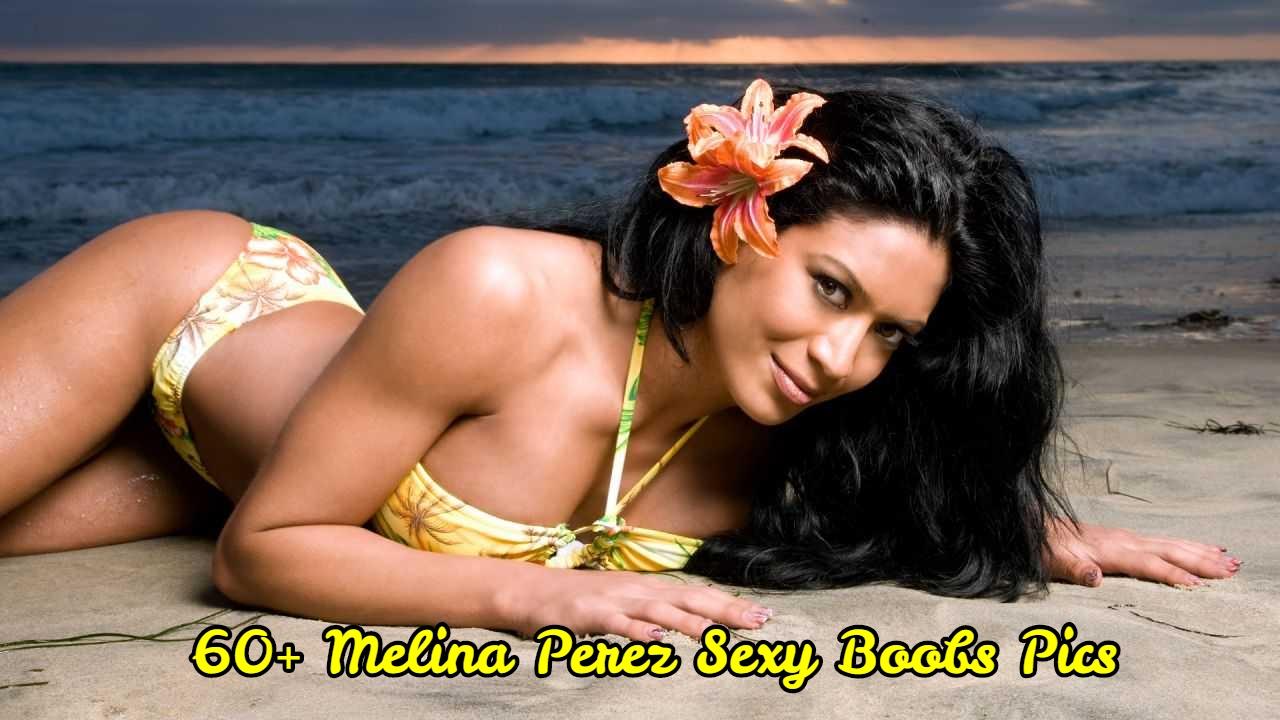 Melina Perez sexy boobs pics