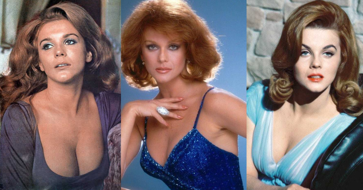 61 Sexiest Ann-Margret Boobs Pictures Will Make You Feel Thirsty For Her Melons