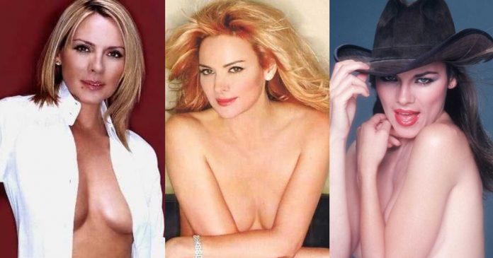 61 Sexiest Kim Cattrall Boobs Pictures Will Tempt You To Bury Your Head In-between