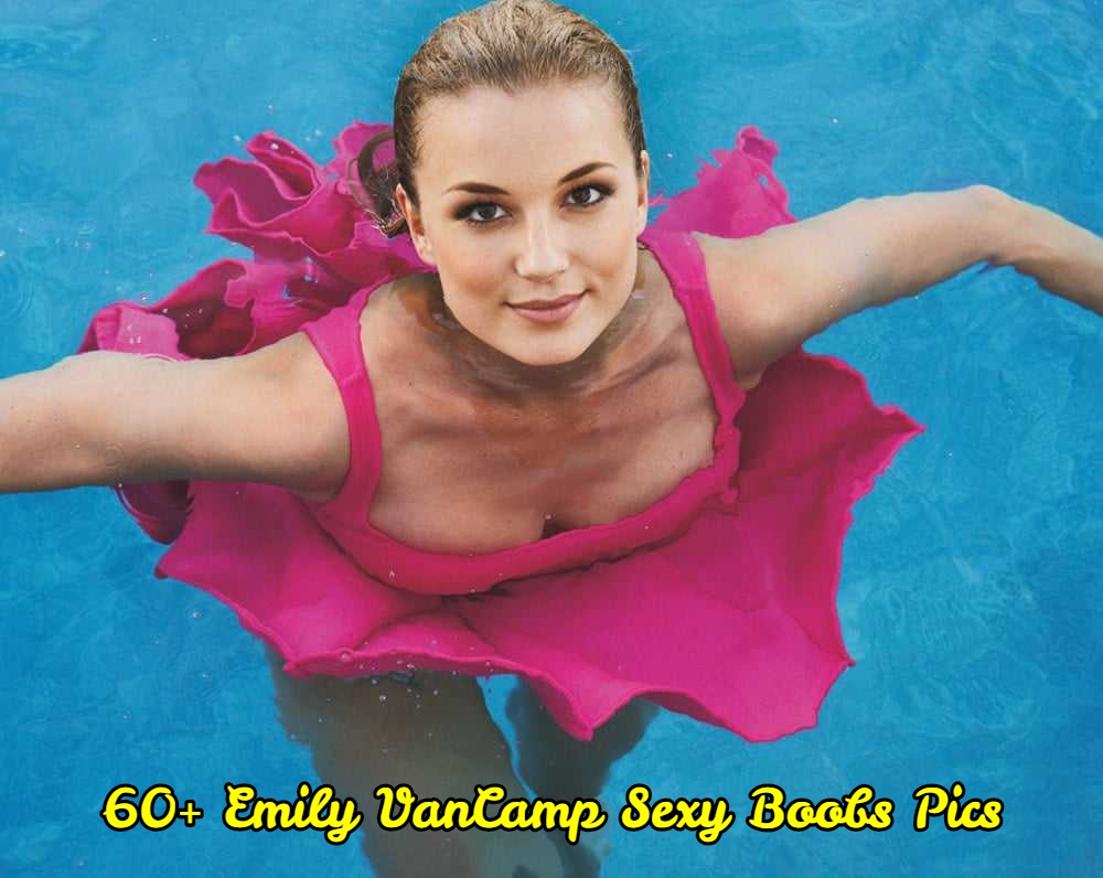 Emily VanCamp sexy boobs pics