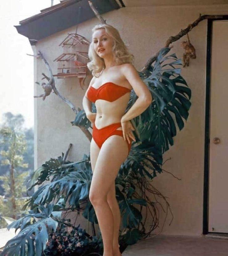 Julie Newmar bikini pics