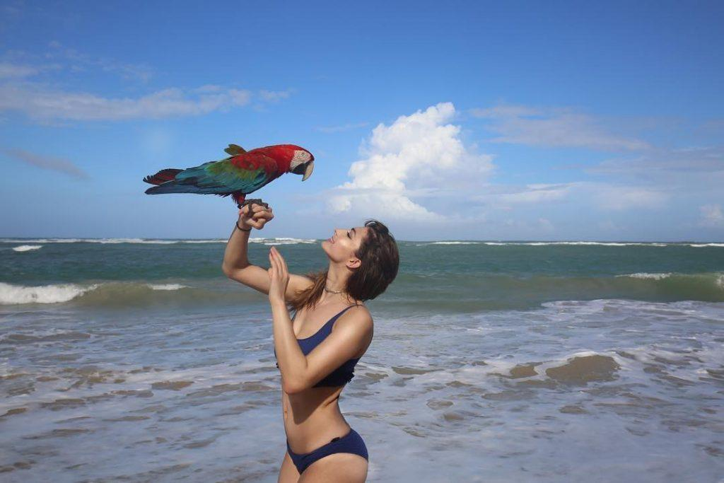 Rachel Levin bikini pics