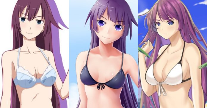 61 Hot Pictures Of Hitagi Senjougahara Which Make Certain To Leave You Entranced