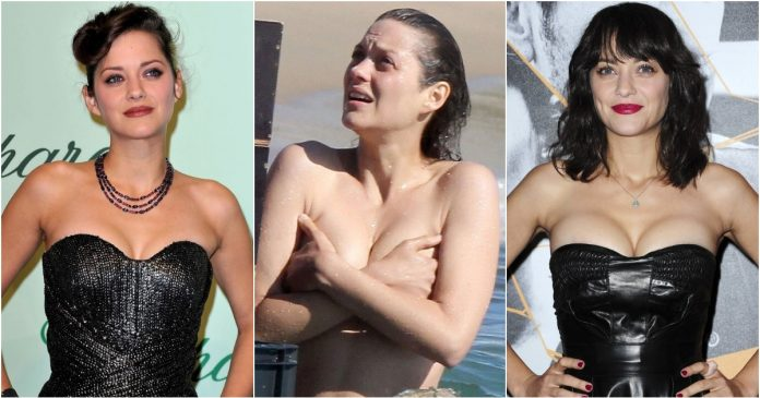 51 Hottest Marion Cotillard Boobs Pictures That Look Flaunting In A Bikini