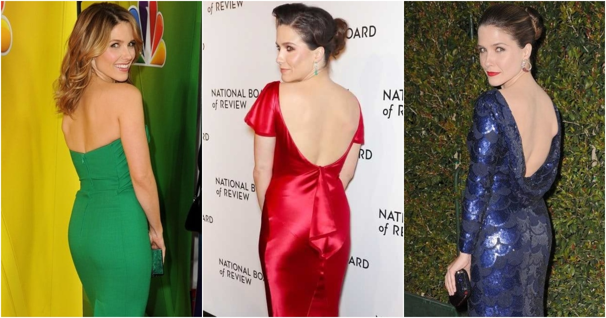 51 Hottest Sophia Bush Big Butt Pictures Demonstrate That She Is Has The Tightest Pair Of Bums As Anyone Might Imagine