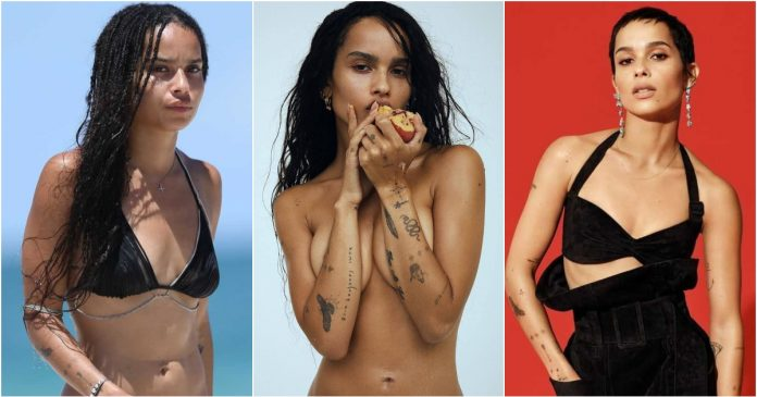 51 Sexiest Zoë Kravitz Boobs Pictures That Compliment Her Neck Nape