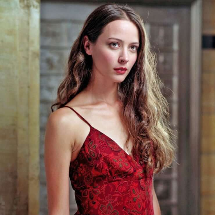 Amy Acker sexy cleavage pics