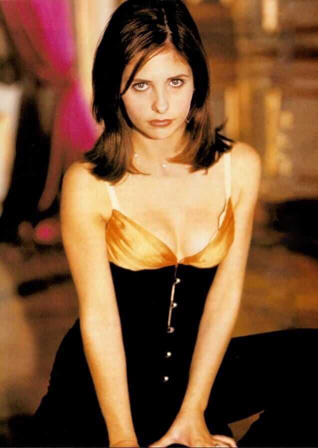 Sarah Michelle Gellar big boobs pics