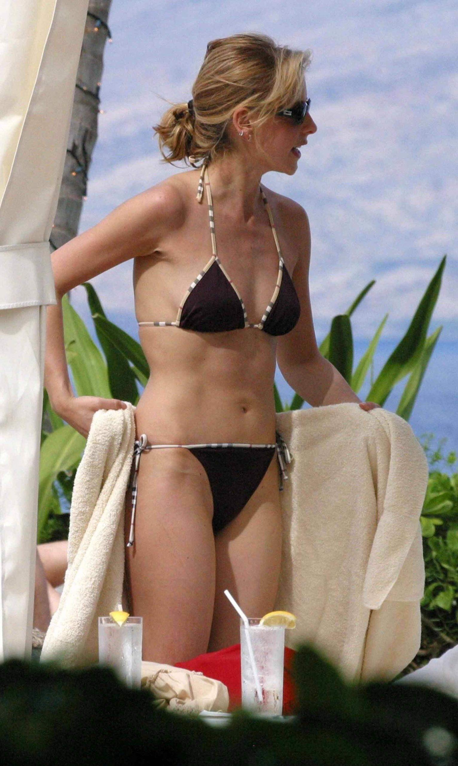 Sarah Michelle Gellar hot bikini pics