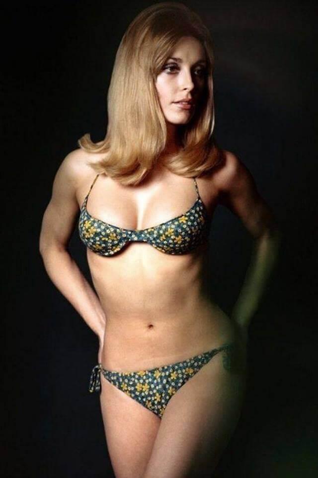 Sharon Tate bikini pics
