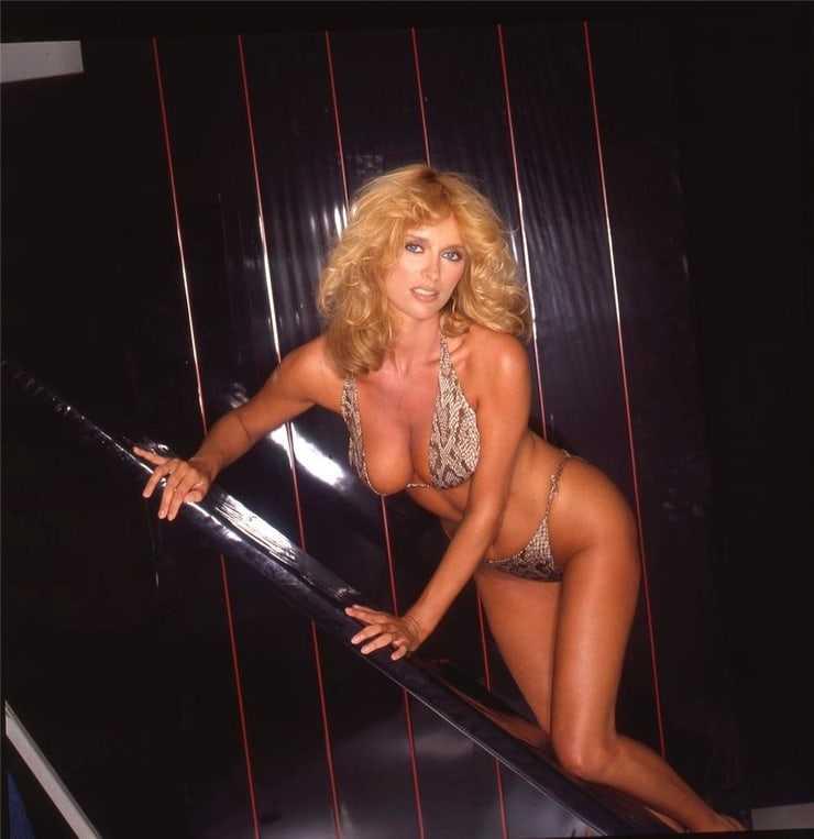 Sybil Danning big tits pics (2)