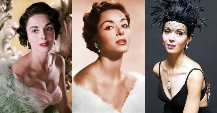 51 Hottest Dana Wynter Boobs Pictures Are As Soft As They Look