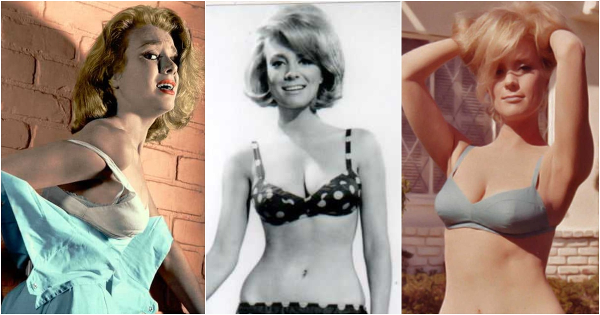 51 Hottest Inger Stevens Boobs Pictures Are Jaw-Dropping And Quite The Looker