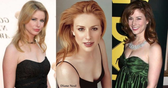 51 Sexiest Diane Neal Boobs Pictures Show Off Her Awesome Bosoms