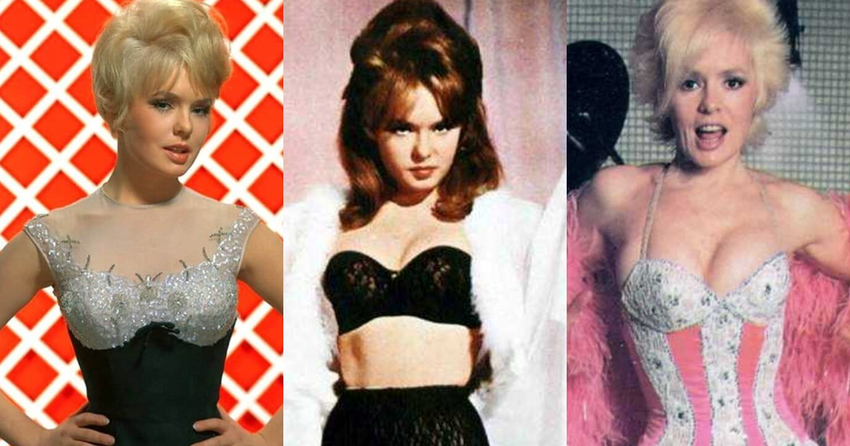 51 Sexiest Joey Heatherton Boobs Pictures Are Just The Right Size To Look And Enjoy