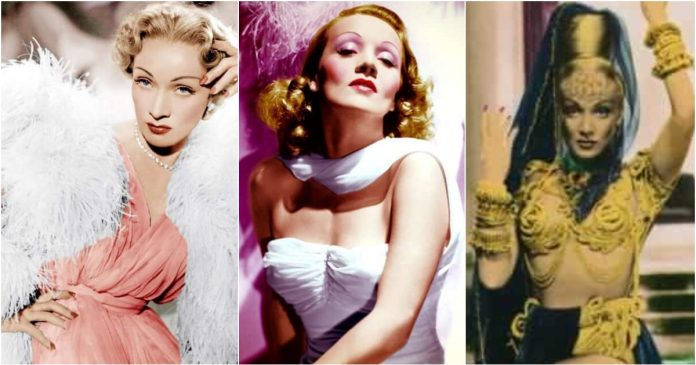 51 Sexiest Marlene Dietrich Boobs Pictures Are Just The Right Size To Look And Enjoy