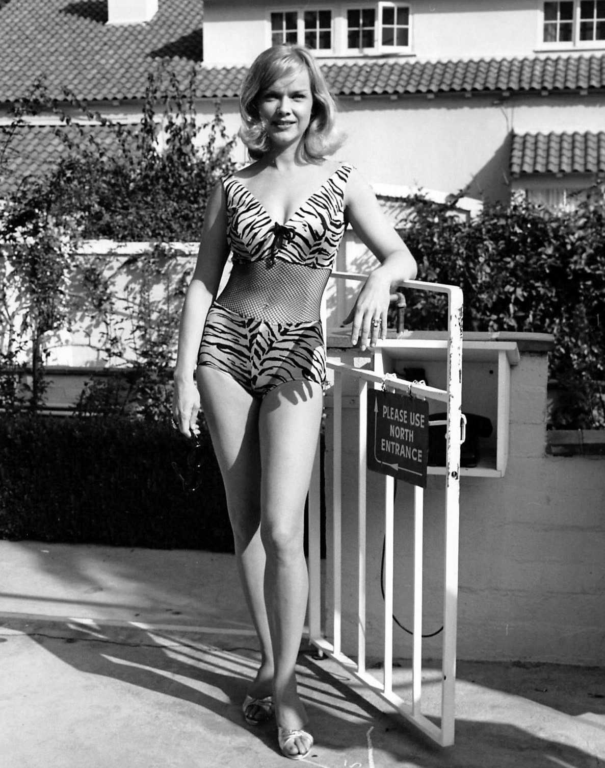 Anne Francis hot pictures