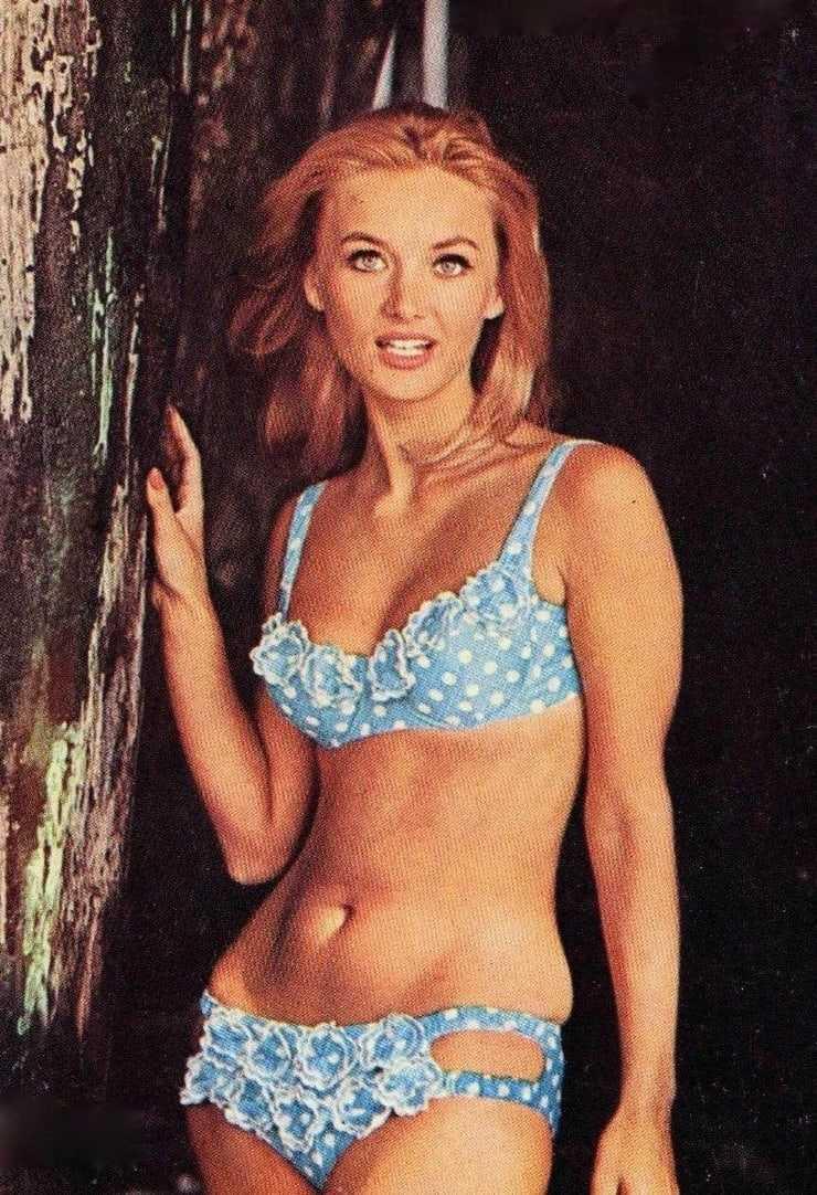 Barbara Bouchet hot bikini pics