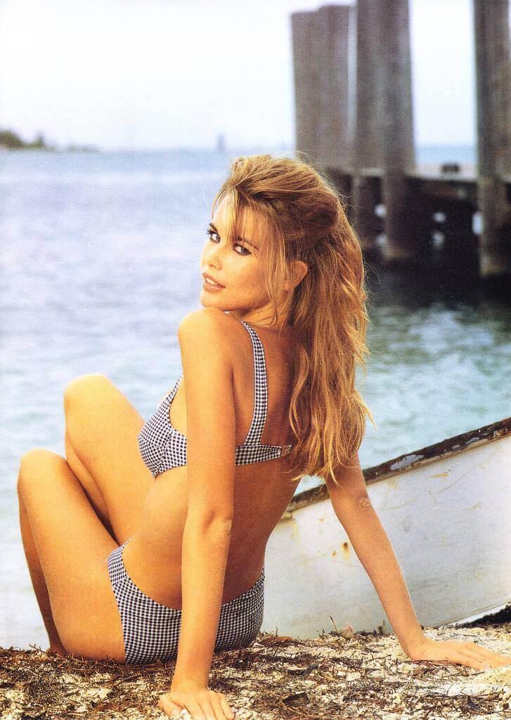 Claudia Schiffer hot look pics
