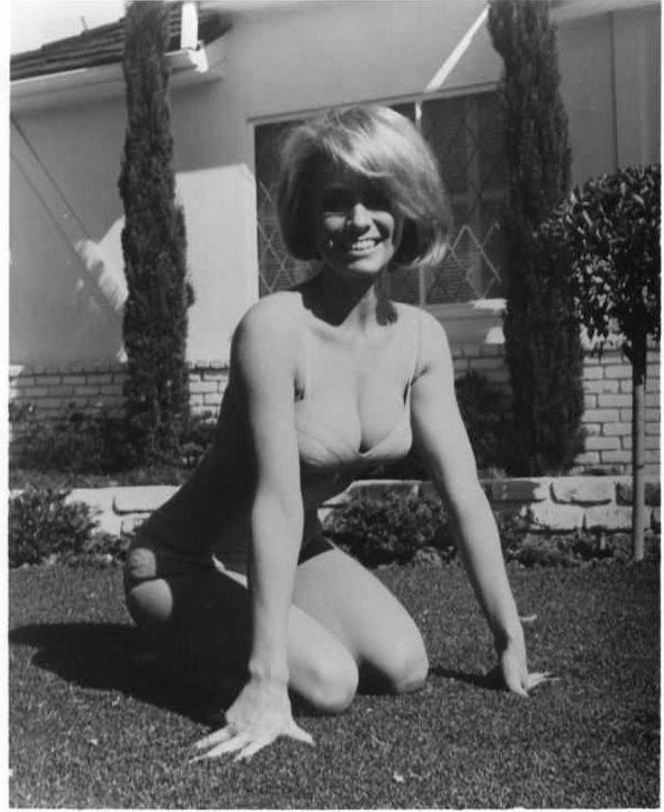 Inger Stevens tits pictures