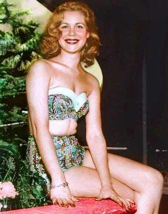 Elizabeth Montgomery tits pics (2)
