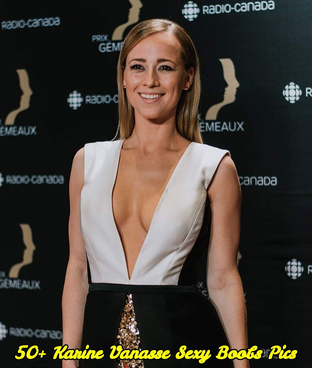 Karine Vanasse sexy boobs pics