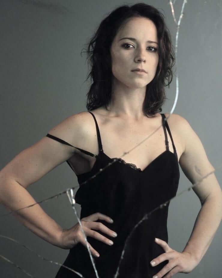 Karine Vanasse sexy cleavage pics